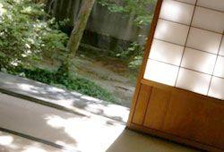 庭の見えるイメージ
