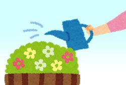 花に水をやるイメージ
