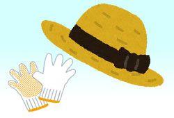 麦わら帽子と軍手のイメージ
