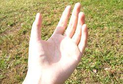 手のイメージ
