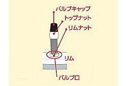 虫ゴムの詳細